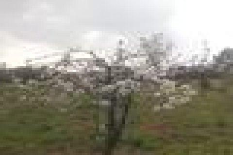 ارض للبيع في منطقة مادبا-لب-الحياض