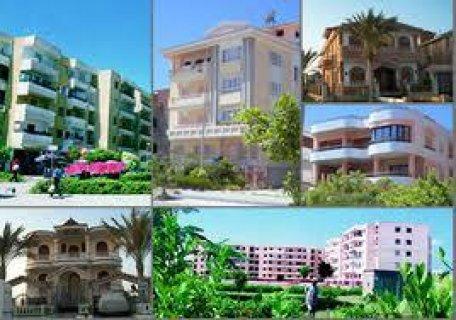 جنوب عمان اراضي للبيع