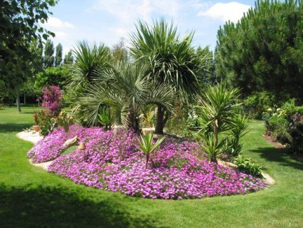 خدمات تنسيق وزراعة الحدائق