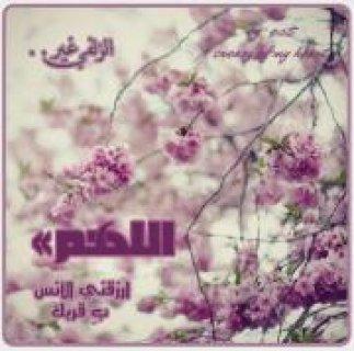اريد شاب محافض على الصلوات في المسجد داعية او امام مسجد او مؤدن