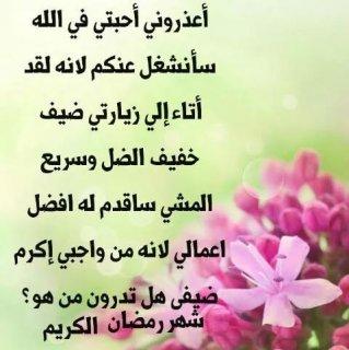 أنا أبحث عن حب حياتي حسن المظه