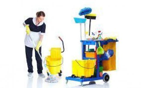 التنظيف المنزلي عاملات اردنيات