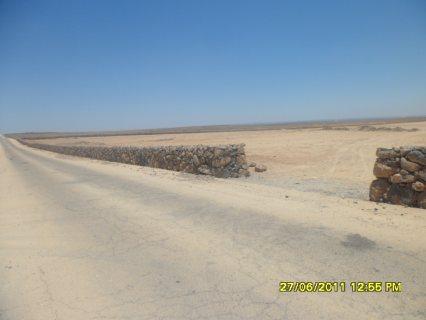 ارض استثمارية زراعية مميزة على الشارع الدولي مباشرة