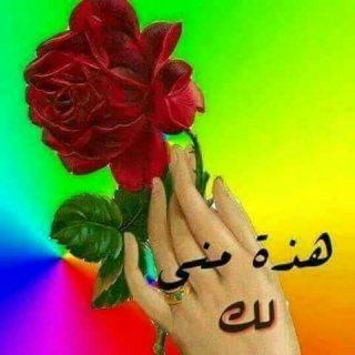 من عمان طريق المطار ضاحيه نخيل