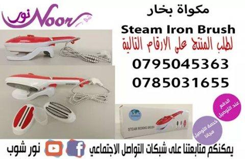 المكواة البخارية Steam Iron Brush