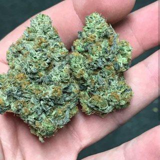 Top quality Marijuana for sale