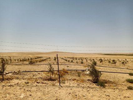 أرض للبيع بسعر مغري طريق المطار منطقة الخريم على شارعين من المالك