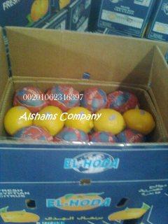 الليمون الطازج