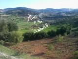 للبيع ارض زراعية بأجمل مناطق جبال عجلون :