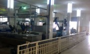 معصرة زيتون مع مزرعة للبيع بسعر مغري