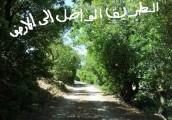 ارض زراعية  للبيع في اجمل مناطق جبال محافظة عجلون السياحية