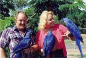 lovely and sweet hyacinth macaw parrots for a lovely and caring