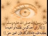 ابحث عن سيده او مطلقة او ارملة 00962796282316