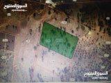 ارض مساحة 9 دونمات للبيع قرب جامعة عجلون الوطنية