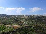 أرض للبيع في حوض الكرسي رقم ( 2 ) منطقة الجندويل غرب عمان
